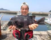 黒島の磯の底物釣果〜イシダイ40cm