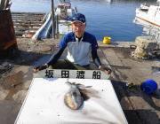 黒島の磯 ヤエンのほかエギングでもアオリイカ釣果あり