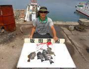 黒島の磯でイシダイ2枚のほか良型カワハギもキャッチ