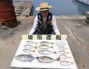 黒島の筏 胴付でアイゴ・ウマヅラ・チャリコ