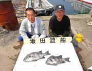 黒島の磯の底物釣り イシダイ43cmと37cmをキャッチ