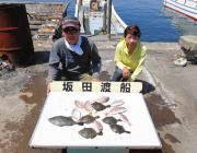 黒島の筏カワハギ・ウマヅラ・チャリコの釣果