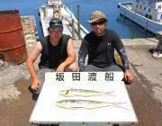 黒島の磯 ミノーでのシイラ釣果