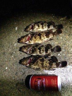 南芦屋浜石畳穴釣りでタケノコメバル〜石の隙間を狙いコツコツ釣れました