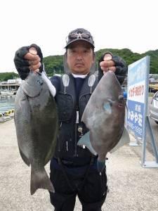 神谷沖一文字外向きでカゴ釣り グレ&ウマヅラ