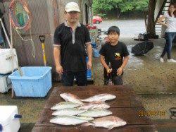 田井の海上釣り堀でマダイ・シマアジ、エサはイワシを使用