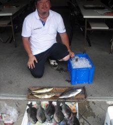 カンゴバエでグレ・チヌの釣果に良型アイゴもキャッチ