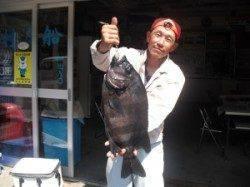 イシダイ54.5cm! 大磯にて大型底物釣果