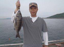 須磨海づり公園 ウキ流し釣りでチヌ48cm
