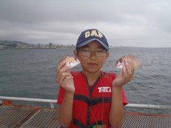 【7日】須磨海づり公園のサビキ釣果