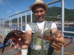 須磨海釣り公園 ぶっこみ釣りでガシラ2尾