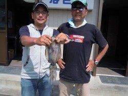 ヤエンでアオリイカの釣果 湯浅の磯