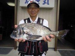 湯浅の磯での紀州釣りで良型チヌ8枚!