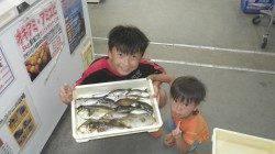 お子様が多彩な釣果〜一本松漁港でバリコ・カワハギ・イサギなど