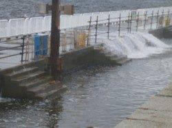 南港海釣り公園 サビキでアジ・サッパも波高く14時で閉園