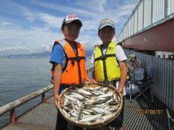 尼崎市魚つり公園、アジ相変わらず釣れています!