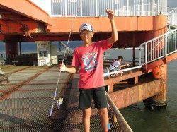 アジイワシが200匹! 尼崎市立魚つり公園