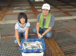 尼崎市魚つり公園 サビキのサバ・アジ・イワシは数釣りできます