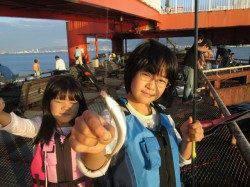 尼崎市立魚つり公園、サンバソウの活性上昇中