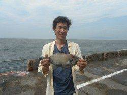 和歌山北港魚つり公園 ウマヅラハギ40cm!