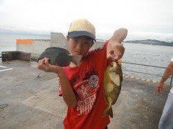 和歌山北港魚つり公園 グレ・アイゴ・アジの釣果