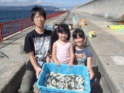 平磯海づり公園 サビキでアジ大漁180尾