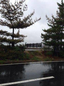 宮津・田井漁港周辺でキス釣り、ダブルもありました♪