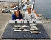 黒島の筏でアイゴ・チャリコ・カワハギの釣果
