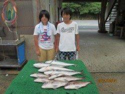 田井の釣り堀でお子様が見事、青物&真鯛をキャッチ!