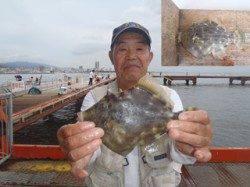 須磨海づり公園 マルハギの記録賞サイズ23.0cmをゲット
