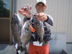 紀州釣りで良型チヌを3枚 湯浅の磯