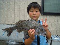 湯浅の磯で良型チヌ・アジ・グレ 少年フカセ師の釣果です