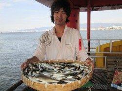 尼崎市立魚つり公園 サビキ大爆釣、二人でアジ400匹イワシ500匹!
