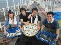 尼崎魚つり公園 今日もサビキ絶好調! 人気のサヨリも少しサイズUP