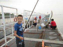 尼崎市立魚つり公園 今日は午前中アジが好調でした