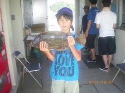 姫路市立遊漁センター 投げ釣りでヒラメ53cm 他キスやサヨリも
