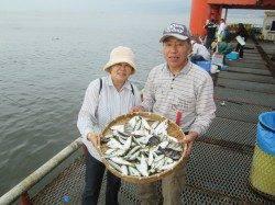 尼崎市立魚つり公園 サビキで大漁アジ・サンバソウなど