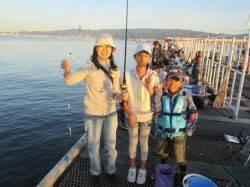 尼崎市魚つり公園 サビキでイワシ・サッパ サヨリの釣果もあり