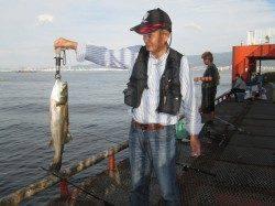 尼崎市立魚つり公園 のませでスズキ・ハネ フカセでチヌの釣果
