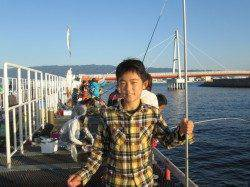 尼崎市魚つり公園 サビキでサッパ 他サヨリの釣果