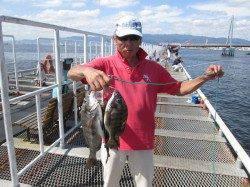 尼崎市立魚つり公園 アジの時合短いのでサヨリ狙いがお勧め!