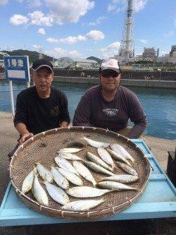 マリーナシティ海釣り公園 サビキでコノシロ・アジの釣果