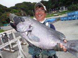 串本町須江 タライにてイシダイ70.3cm!