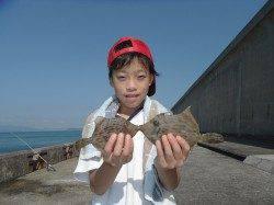 北港釣り公園 カワハギの釣果