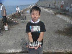 和歌山北港魚つり公園 セイゴ・グレ・ガシラ・カワハギ