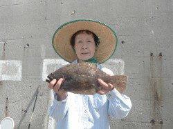 和歌山北港魚つり公園 ヒラメ35cmをキャッチ