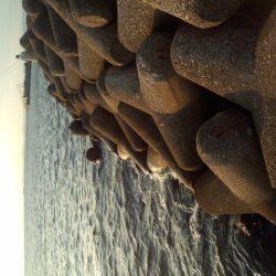 大津川河口右岸でタチウオ狙い 時合は日が落ちてからの30分