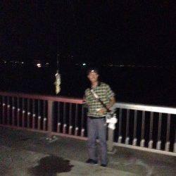 林崎漁港 エギングでタコの釣果でした