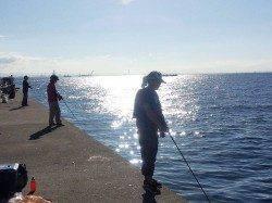神戸沖堤で青物狙い ジグでサワラ&アジ