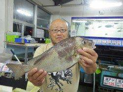 堅田漁港にてズボ釣り コロダイ46cm・1.2kg!